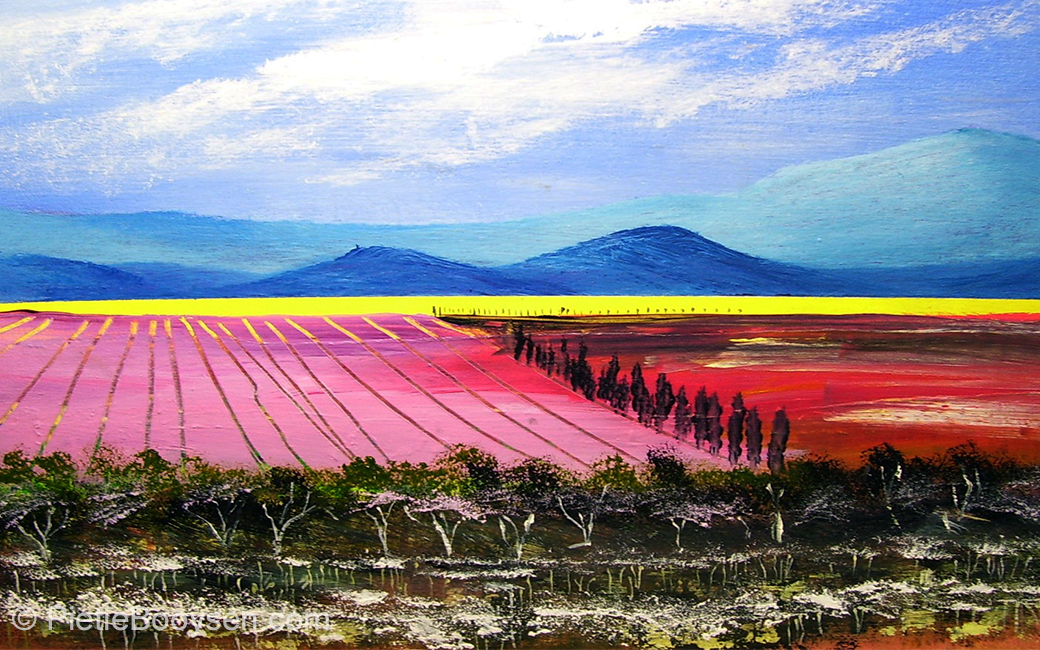 Bush and fields by Pietie Booysen