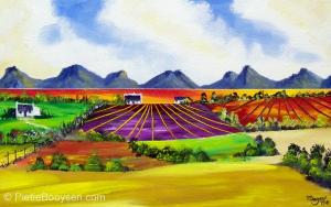 Fields in colour by Pietie Booysen