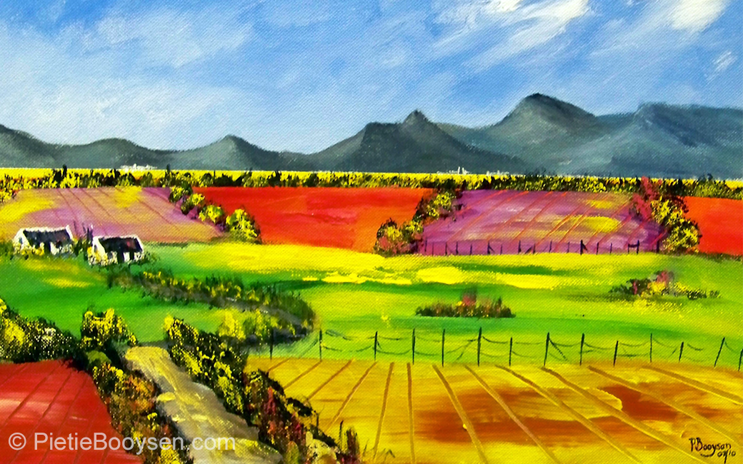 Golden fields by Pietie Booysen