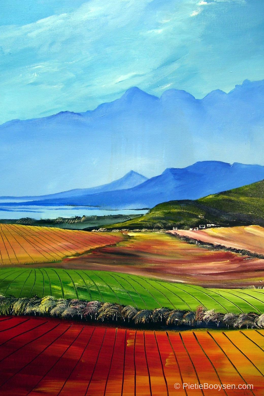 Hex River Valley & dam by Pietie Booysen
