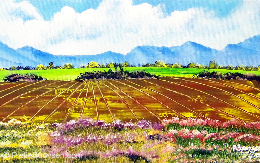 Ploughed fields and flowers by Pietie Booysen